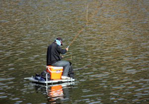 从钓位、钓饵与钓技三点谈水库如何钓大鱼