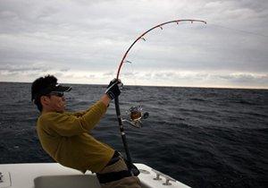 秋季是钓大鱼的季节 钓大鱼用什么鱼竿好