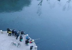 冬季钓鱼打窝方法与施钓技巧