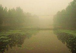 冬季大雾天气手竿钓鱼的技巧