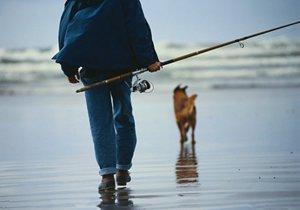 水库风浪大时如何钓鱼