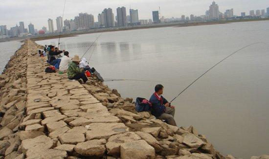 自然水域水位下降如何钓鱼