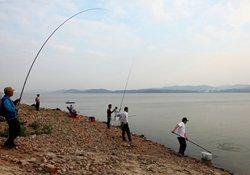 自然水域如何野钓大鱼