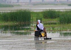 什么风向利于垂钓 天气与风向对钓鱼的影响