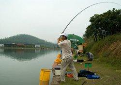 大水面抛竿钓鱼的六大作钓技巧