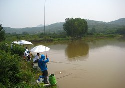手竿水库钓鱼的钓点和饵料及溜鱼技巧