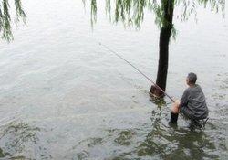 夏季如何钓草鱼 雨天过后好钓草鱼吗