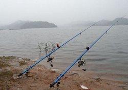 深秋季节抛竿钓大鱼的优势与技巧