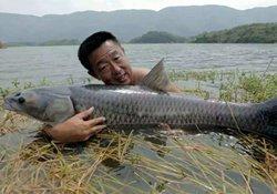 南方水库湖泊钓大鱼的技巧攻略