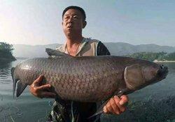 在渐入秋末的10月份,该如何钓大鱼?