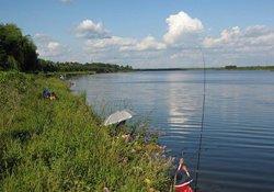 野钓如何根据钓场自然环境分辨鱼情的好坏