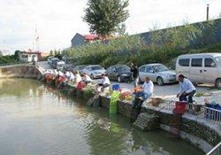 秋季垂钓大鱼漂相和小杂鱼漂相的差异