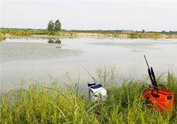 草丛与草窝的特点 野钓草窝的技巧与溜鱼方法