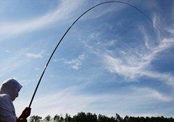 秋季手竿与海竿垂钓鳊鱼的实用技巧