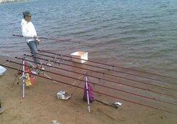 在辽河用海竿钓鲤鱼的实战经验分享