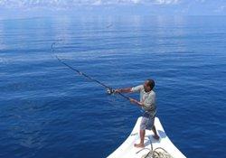 浅谈抛竿钓鱼的正确方法