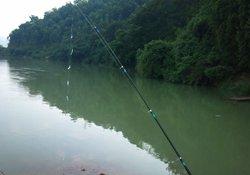 夏季串钩钓鱼的饵料选用与钓法介绍