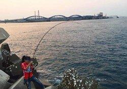 海竿钓鱼收线的方法:抬竿、摇轮、起鱼