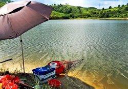 到陌生水域钓鱼 根据鱼道选钓位的八个技巧