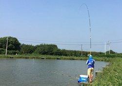 立秋后钓大鱼需要掌握的四个技巧