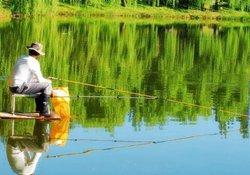 夏天早晨和晚上钓鱼最好 夏季夜钓的抉择