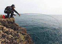 用小白条钓大鲤鱼的实战经验分享