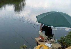 秋季钓鱼的三个阶段 初秋夜钓正当时