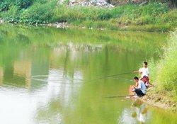 夏季水库涨水期野钓怎样选择钓位