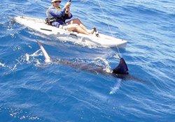 自然水域钓大鱼的做窝与垂钓技巧