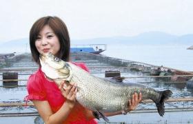适合长江河流垂钓的四种钓法