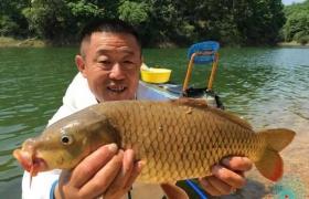 春季池塘钓鲤鱼选择钓位与饵料的方法