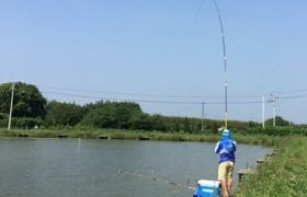 秋季水库掌握正确钓法钓大鱼