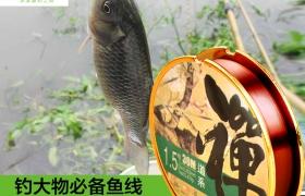 鱼线主线日本进口拉力强劲钓鱼王渔具垂钓用品天丝禅台钓鱼线子线