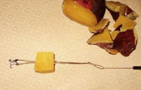 冬季制作红薯饵钓鲤鱼的方法