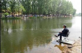 适合春季钓鱼的三种天气