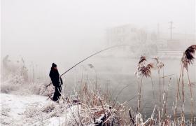 冬春季节野河红虫钓大鲫鱼的技巧