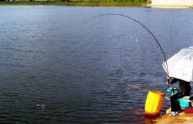 入秋之后鱼塘钓鱼的五个技巧