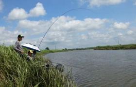 野河溪流钓鱼水流太急如何作钓