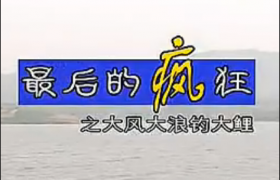 《渔我同行》第98期 大风大浪钓大鲤