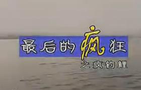 《渔我同行》第99期 疯钓鲤
